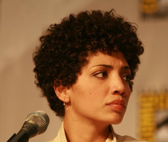 Comic-Con 2010 Jasika Nicole Fringe Panel