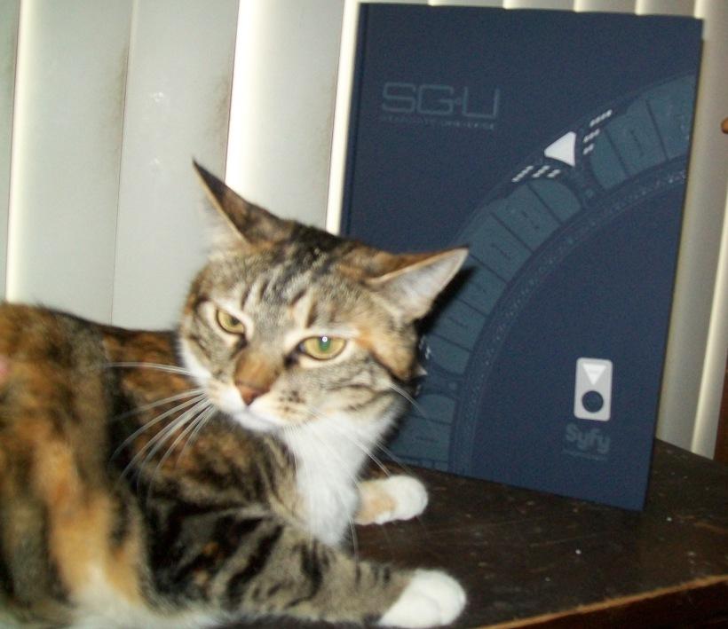 Stargate Universe Press Kit Arrives Through Wormhole!