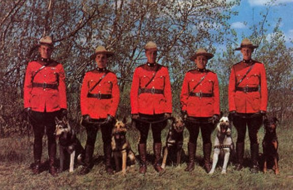Click to visit the Canadian Royal Mountied Police