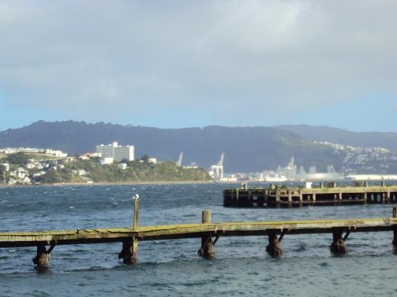 Looking across to Wellington Harbour from Miramar, New Zealand