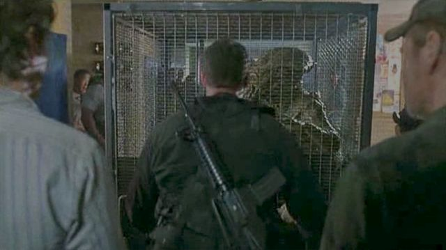 Skitter in Cage