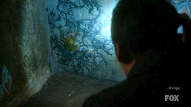 Fringe S4x03 - The Perpetrator