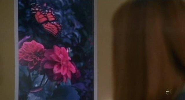 Fringe S3x18 - The butterfly video mural