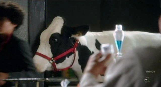 Fringe S4x01 - Gene the Cow returns in season 4