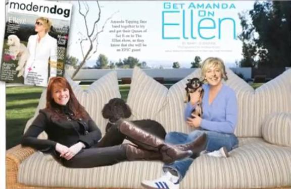 Click to visit the Get Amanda on Ellen Movement!