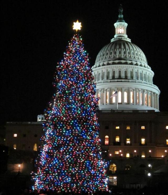 Merry Christmas, Happy Hanukkah, Happy Kwanzaa and a Happy New Year!